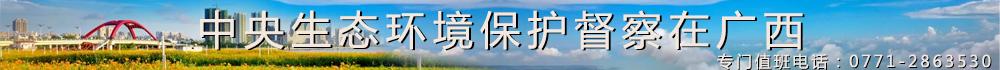 中央生態環境保護督察在廣西1000.jpg